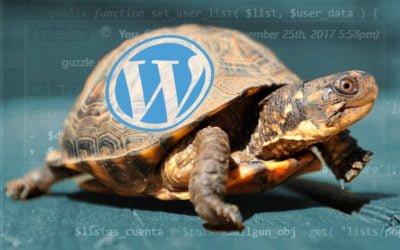 Este WordPress va muy lento…