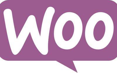 Obteniendo datos de los productos de WooCommerce